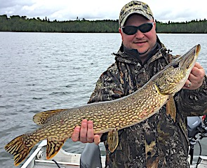 Great Fishing for BIG Northern Pike at Fireside Lodge in Canada by Dan