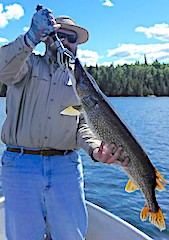 BIG FAT Trophy Northern Pike by Steven Starnes Fishing at Fireside Lodge in Canada