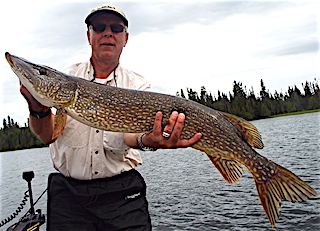 Big Northern Pike by Jim Bartling Fishing at Fireside Lodge