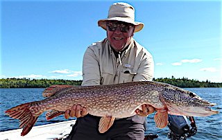Huge Trophy Northern Pike Fishing at Fireside Lodge by by Ted Hollo