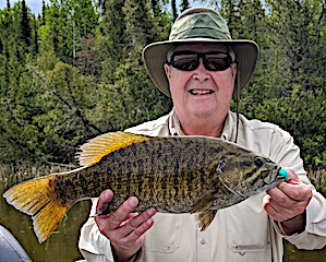Countless GIANT Trophy Smallmouth Bass Fishing at Fireside Lodge in Canada Fishing by Doug Kerr