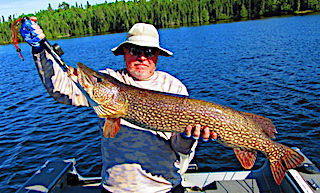Monster Trophy Northern Pike Fishing at Fireside Lodge in Canada by Walt LaCasse