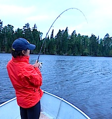 Fishing Northern Pike at Fireside Lodge in Canada