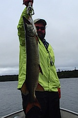 BIG Muskie Fishing At Fireside Lodge Canada by Steven Starnes