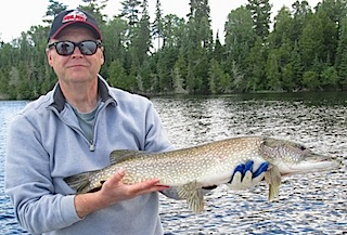 BIG Northern Pike Fishing at Fireside Lodge Canada by Jim
