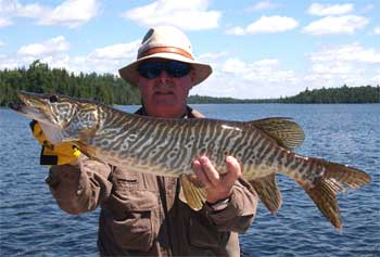 Catching Tiger Muskie Fishing in Canada