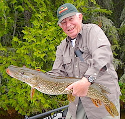 Very Large Northern Pike Fishing at Fireside Lodge by Alan