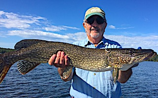 BIG Northern Pike Fishing by Tony at Fireside Lodge in Canada