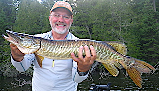 Tiger Muskie Fishing at Fireside Lodge in Canada by Kenny