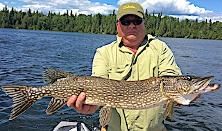 Nice BIG Northern Pike Fishing by Wendell at Fireside Lodge in Canada