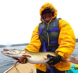 Big Muskie by Mary Bergman Fishing at Fireside Lodge Canada