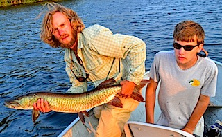 40-inch Muskie caught Fishing at Fireside Lodge by Henry Ziletti
