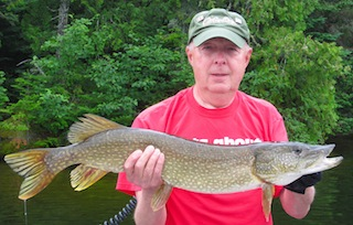 BIG 36-inch Northern Pike Fishing at Fireside Lodge Canada by Tom Miller