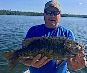 Many Trophy Size Smallmouth Bass Fishing at Fireside Lodge in Canada
