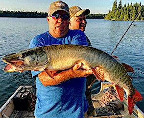Big Trophy Muskie Fishing by BOB (Dan Ramsey) at Fireside Lodge in Canada