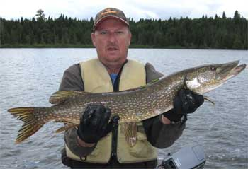 fabulous northern pike fishing in canada