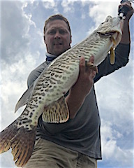 GREAT Tiger Muskie Fishing Alone by Mike