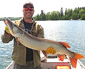 Trophy Muskie Fishing at Fireside Lodge by Pete