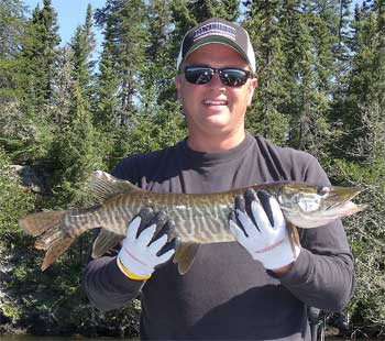 1st Tiger Musky Fishing for Smallmouth Bass at Fireside Lodge Canada