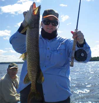 northern pike fly fishing fun in canada
