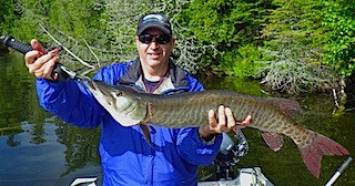 1st ever Musky fishing at Fireside Lodge by Sandor in Canada