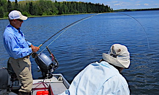 Doug Fly-Fishing In Action at Fireside Lodge in Canada