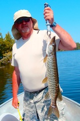 1st Muskie by Paul Koelling Fishing at Fireside Lodge Canada
