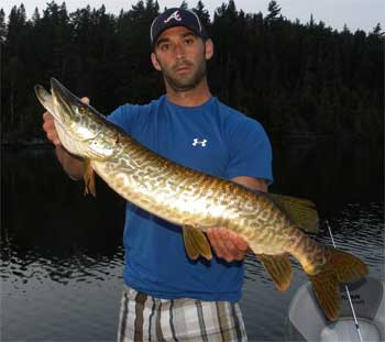 Heavy Tiger Musky at Fireside Lodge Canada