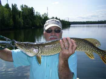 Catch Many Northern Pike Fishing at Fireside Lodge Canada