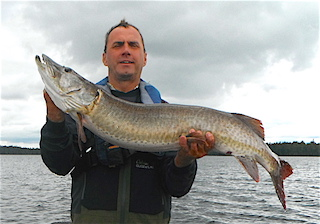 Tim with a 2nd Trophy Muskie at 45.5-inches Fishing at Fireside Lodge