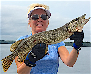 So Many Pike So Little Time Fishing at Fireside Lodge