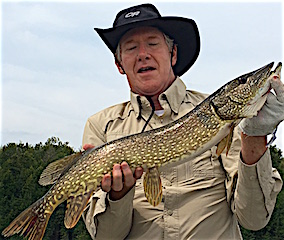 Fabulous Northern Pike Fishing at Fireside Lodge in Canada