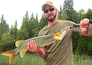 My 1st Muskie ever Fishing at Fireside Lodge by Bryan
