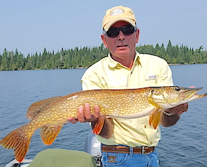 BIG Northern Pike While Fishing for Smallmouth Bass at Fireside Lodge