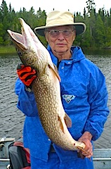 Giant 39-inch Northern Pike Fishing at Fireside Lodge by Bill A