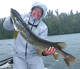 HUGE Tiger Musky by Kenny Klimes Fishing at Fireside Lodge Canada