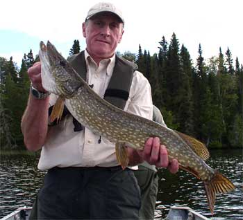 Pike Anglers Cub of Great Britain Fishing at Fireside Lodge Canada