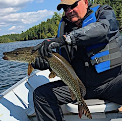 Very Good Northern Pike Fishing by Tom at Fireside Lodge in Canada