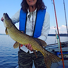 Another Large Northern Pike Fishing by Jane at Fireside Lodge in Canada