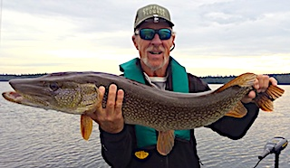 BIG Northern Pike at Fireside Lodge in Canada by Bob