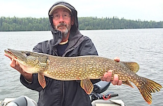 BIG Heavy Northern Pike Fishing at Fireside Lodge by Tony