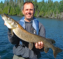 Plentiful 34-inch to 38-inch Northern Pike fishing at Fireside Lodge by Tim