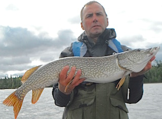 BIG Trophy Northern Pike are Normal at Fishing at Fireside Lodge
