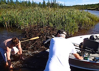 Breaking Through Beaver Dam with Big Boat Fishing at Fireside Lodge