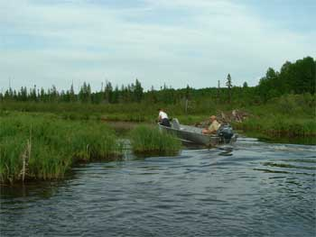 Ontario creek fishing lakes