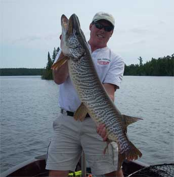 Canada tiger muskie fishing