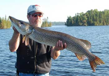 northern pike northwest ontario