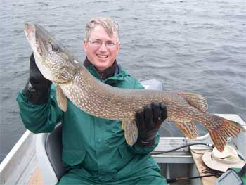 heavy northern pike