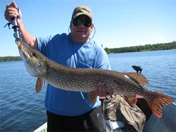 northern pike giant