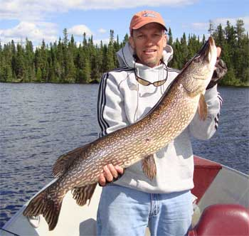 northern pike big
